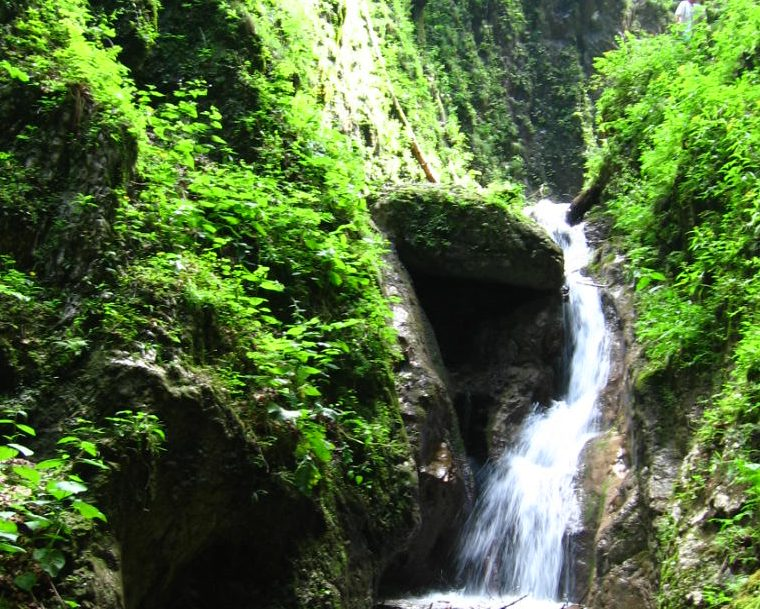 day trips from Bucharest - Seven ladders canyon near Brasov